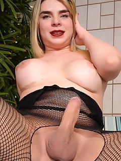 Sexy shemale Carol Penelope shows it all | Dream Tranny